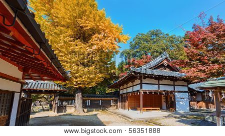 Tamukeyama Hachimangu shrine in Nara in autumn