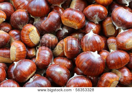 Spanish chestnuts with shells (Sweet chestnuts)