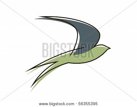 Flying Swallow Bird