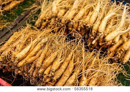 Fresh Ginseng in food market