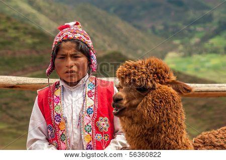 Boy With Lama