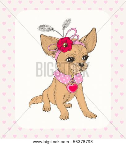 Chihuahua with decoration on head, hand-drawn illustration in vintage style.