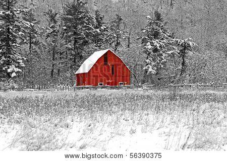 Red Barn 41