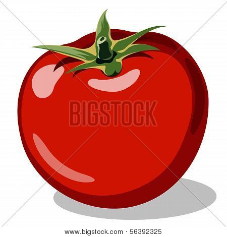 red ripe tomato