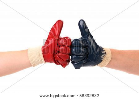 Alliance of working people.