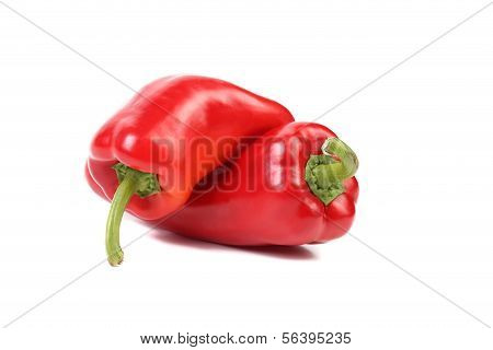 Two red sweet pointy pepper(capsicum).