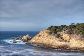Cyprus Cove At Point Lobos Park
