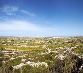 image of maltese-cross  - Panorama of Maltese countryside with foreground vegetation - JPG