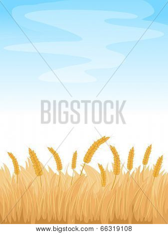 Background Illustration Featuring a Wheatfield Under a Clear Blue Sky