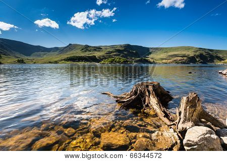 Haweswater Resevoir With Old Tree Stump