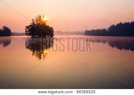 Trees on lake early at sunrise