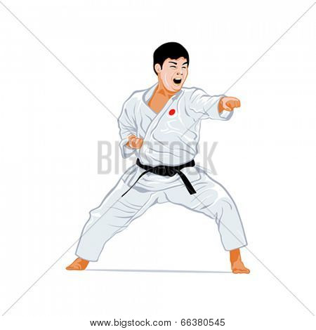 Karate fighting stance isolated