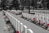 foto of battlefield  - New British Cemetery world war 1 flanders fields - JPG