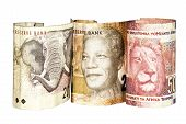 pic of nelson mandela  - three south african bank notes showing elephant Mandela and lion - JPG