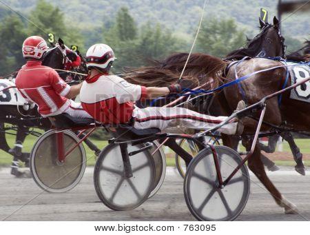 harness race-2