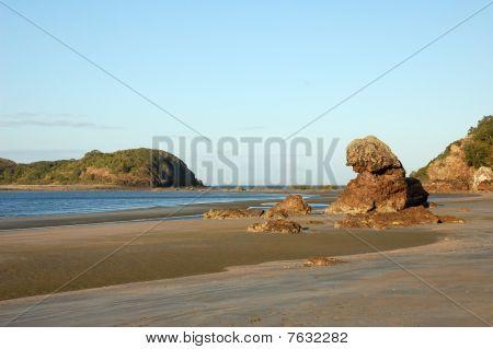 Beach At Cape Hillsborough, Australia