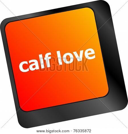 Calf Love Words Showing Romance And Love On Keyboard Keys