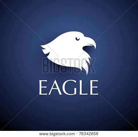 bird emblem - vector eagle head icon