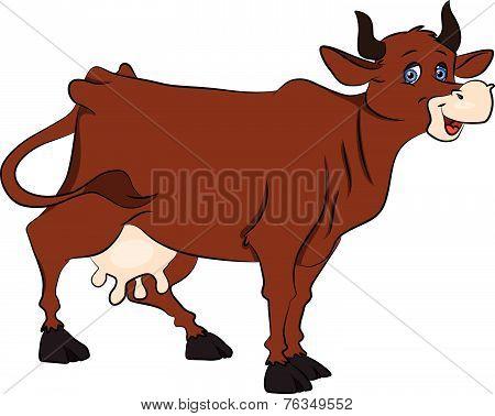 Vector Of Cow.