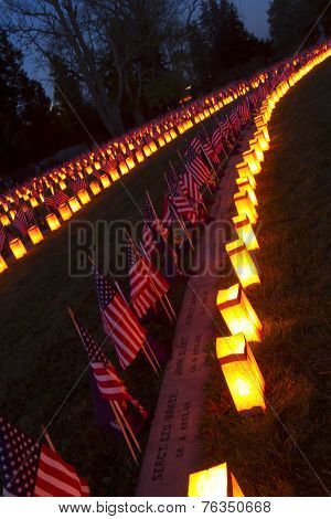 Rows Of Graves At Gettysburg Luminary