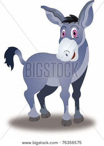 Donkey, Illustration