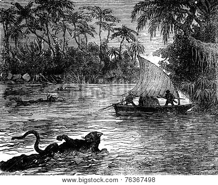 Clinging To The Floating Corpse, One Of The Jaguars, Vintage Engraving.