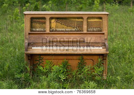 Abandoned Piano Forgotten In A Green Field