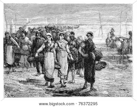 The. Cancale The Boats Return, Statement Of Eugene Feyen. - Drawing Sellier, Vintage Engraving.