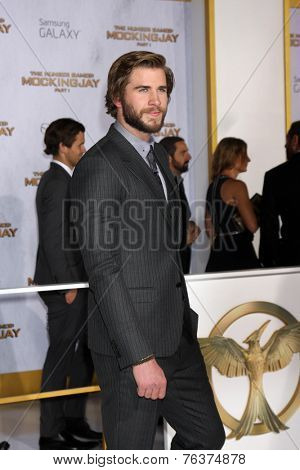 LOS ANGELES - NOV 17:  Liam Hemsworth at the The Hunger Games: Mockingjay Part 1 Premiere at the Nokia Theater on November 17, 2014 in Los Angeles, CA