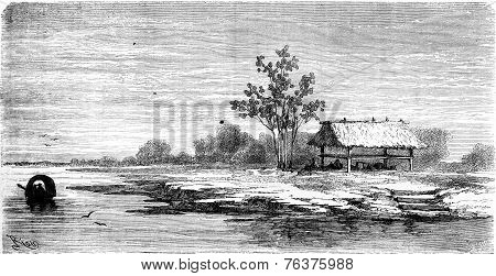 Home Of Cocamas Indians, Vintage Engraving.