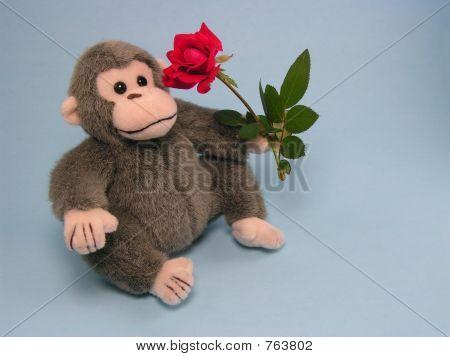 Love Monkey 1