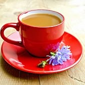 stock photo of chicory  - Chicory drink in a red cup with flower on a wooden boards background - JPG