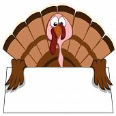 picture of begging  - turkey with begging eyes  - JPG