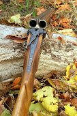 stock photo of shotgun  - A wooden retro shotgun in autumn style - JPG