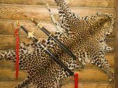 Постер, плакат: Кожи леопарда