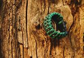 stock photo of paracord  - Bracelet paracord is hanging on a tree in autumn forest no people - JPG