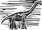 stock photo of apatosaurus  - Woodcut style image of a fossil of a long necked Apatosaurus or brontosaurus dinosaur - JPG