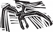 image of pterodactyl  - Woodcut style image of a fossil of a pterodactyl dinosaur - JPG