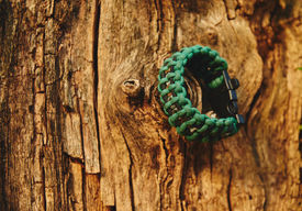 picture of paracord  - Bracelet paracord is hanging on a tree in autumn forest no people - JPG