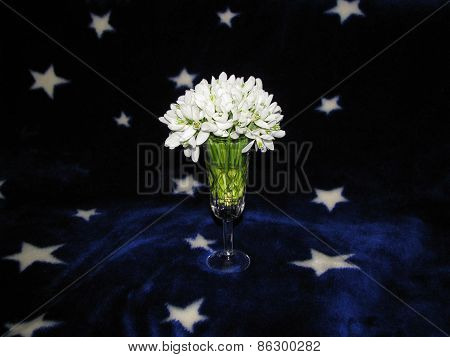 bouquet in a glass