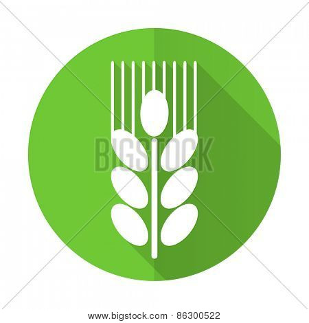 grain green flat icon agriculture sign