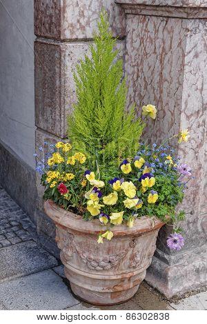 Street Flowerbed Bowl With Blooming Flowers