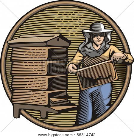 Vector illustration of a beekeeper, collecting honey from a beehive. Organic farming. Retro woodcut style.
