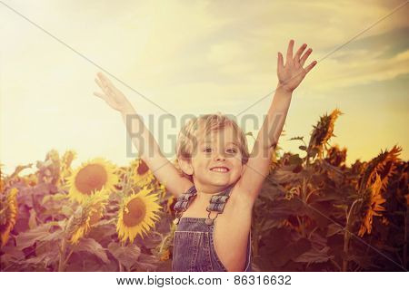 Happy boy in a field of sunflowers. Instagram effect.