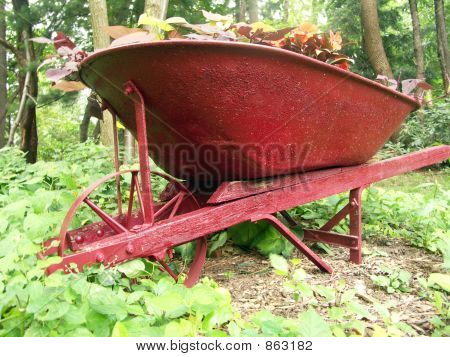 Growing Wheel Barrow
