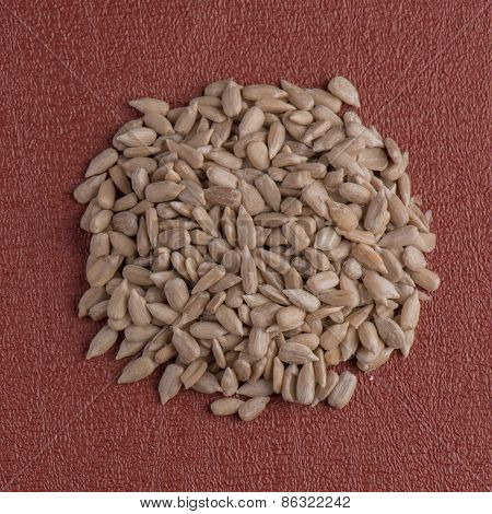 Circle Of Shelled Sunflower Seeds