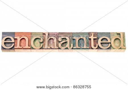 enchanted word typography in isolated letterpress wood type blocks