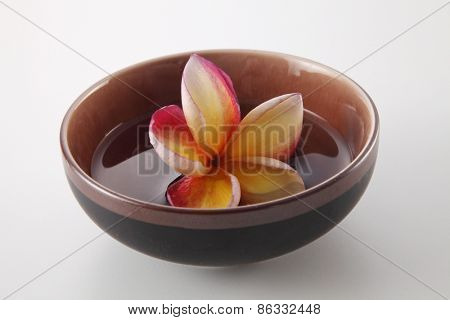 frangipani in a bowl with water