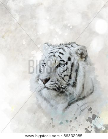 Digital Painting Of White Tiger Head
