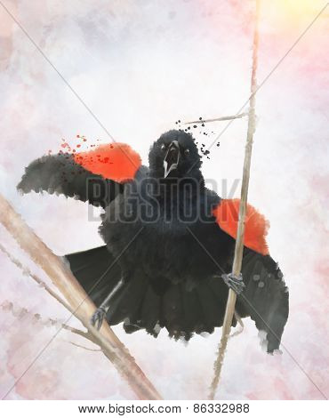 Digital painting Of Red Winged Blackbird
